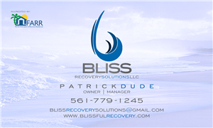 BLISS RECOVERY SOLUTIONS LLC photo #2