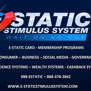 E-STATIC STIMULUS SYSTEM, INC. logo