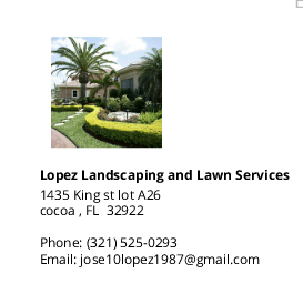 LOPEZ LANDSCAPING AND LAWN SERVICES logo